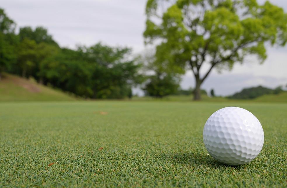 ゴルフグリーンイメージ